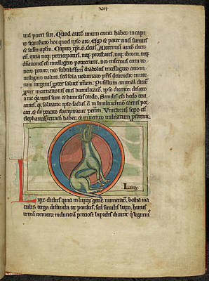 Book Illustrations Photograph - Illustration On Page Of Manuscript by British Library