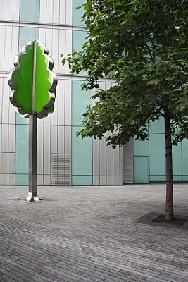 I'm A Tree Art Print by Stephen Norris
