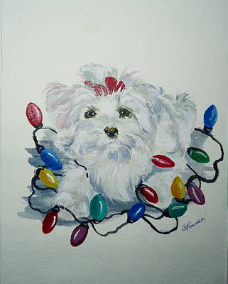 Maltese Dog Christmas Cards Wall Art - Painting - I'm Helping by Carole Powell