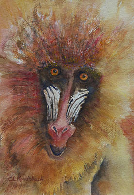 Painting - I'm Not Just A Monkey I'm A Mandrill by Cynthia Roudebush