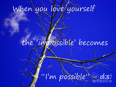 Photograph - I'm Possible by Drew Shourd