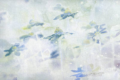 Aimelle Painting - Imagine - Blue V05 by Variance Collections