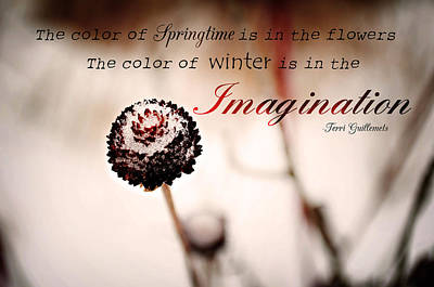 Photograph - Imagine by Jenn Bowers