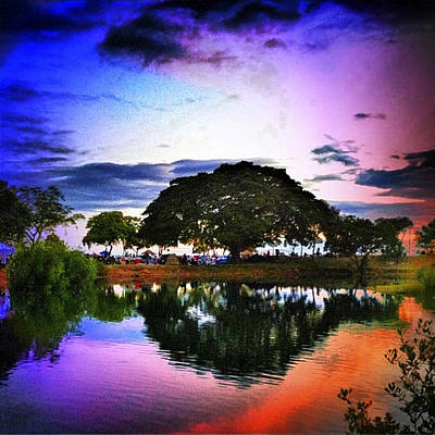 Haleiwa Photograph - Lagoon Reflections by Stacy Vosberg