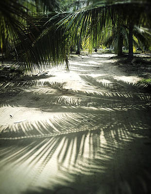 Haleiwa Photograph - Shadows by Stacy Vosberg
