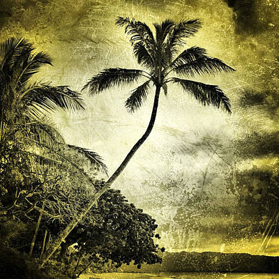 Haleiwa Photograph - Vintage Palm by Stacy Vosberg
