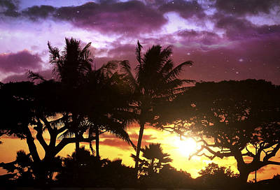 Haleiwa Photograph - Tropical Hues by Stacy Vosberg