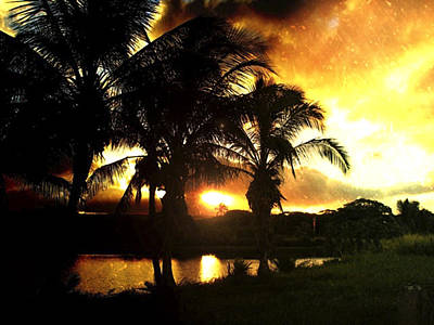 Haleiwa Photograph - Tropical Sunset by Stacy Vosberg