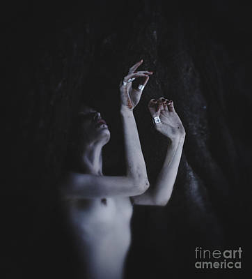 Photograph - Imitate The Buried Roots by Natalia Drepina