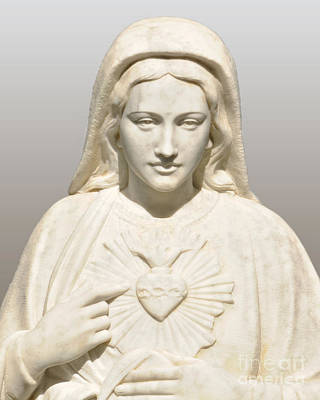 Photograph - Immaculate Heart Of Mary by Josephine Cohn