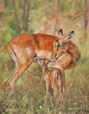 Deer Painting - Impala Antelop by David Stribbling