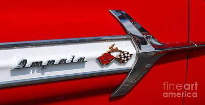 Photograph - Impala by Mark Spearman
