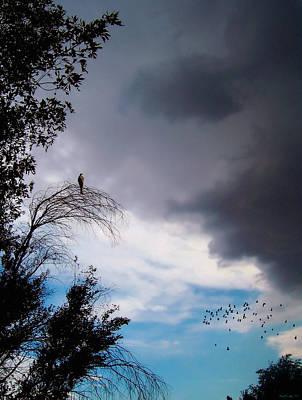 Glenn Shade Photograph - Impending Storm by Glenn McCarthy