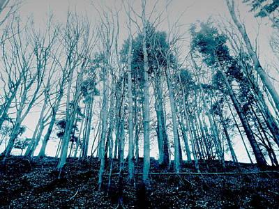 Thomas Kinkade - Imposing Nature by Brainwave Pictures