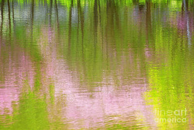 Photograph - Impression Of Pink And Green by Charline Xia