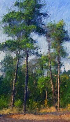 Cape Cod Digital Art - Impression Trees by William Sargent