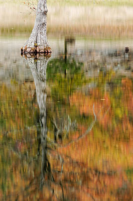 Impressionism Photos - Impressionist reflection of Fall Colors by Silvio Ligutti