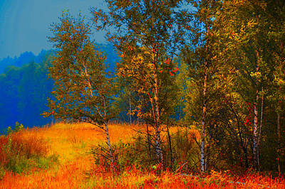 Autumn Scene Photograph - Impressionistic Autumn by Jenny Rainbow