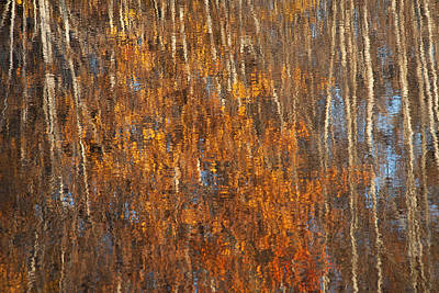 Photograph - Impressionistic Fall by Doug Davidson