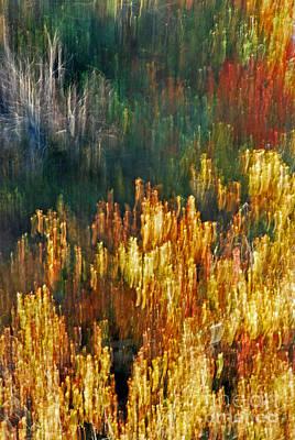 Impressionists Autumn Print by Skip Willits