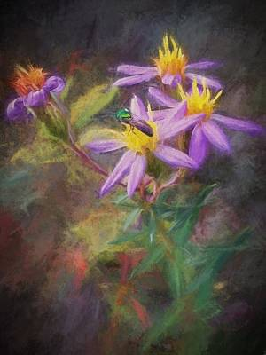 Photograph - Impressions Of An Aster by Diana Boyd