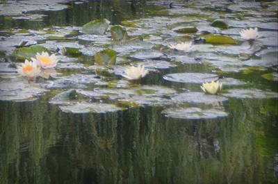 Photograph - Impressions Of Monet's Water Lilies  by Carla Parris