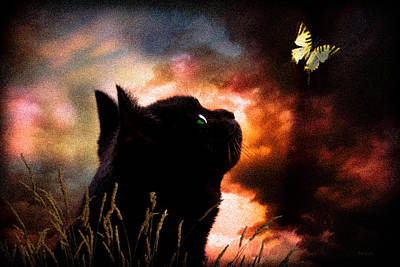 Cat Sunset Photograph - In A Cats Eye All Things Belong To Cats.  by Bob Orsillo