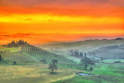 Vineyards Photograph - In A Distant Land. by Midori Chan