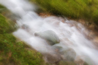 Black Creek Nature Sanctuary Photograph - In A Rush by Holger Spiering