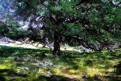 Painting - In A Shadow Of The Oak Tree by Danuta Bennett