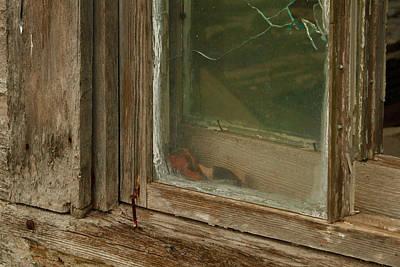In A Window Pane Art Print