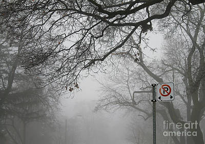 Photograph - In A Winter Fog by Nina Silver