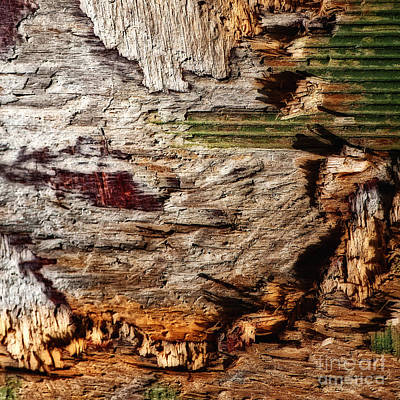 Photograph - In Box Canyon Abstract Square by Lee Craig