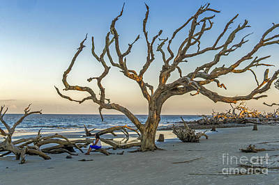 Photograph - In Deep Thought On Jekyll Island  by Willie Harper