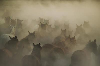 Cappadocia Wall Art - Photograph - In Dust by H?seyin Ta?k?n