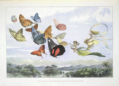 Mythological Photograph - In Fairy Land by British Library