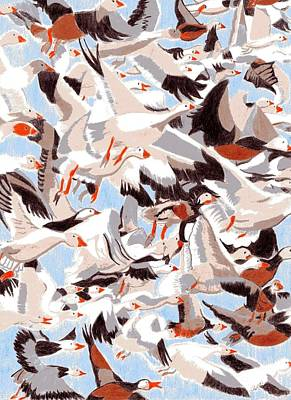 Snow Geese Drawing - In Flight by Art By Antares