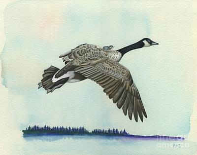 Drawing - In Flight by Rosellen Westerhoff