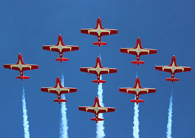 In Formation Art Print by Randy Hall