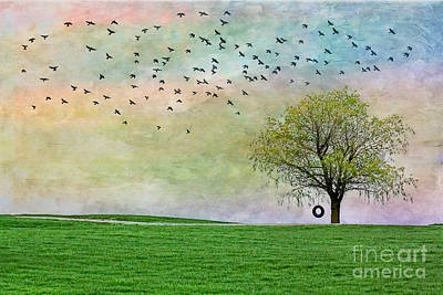 Rural Art Photograph - In Green Pastures by Jak of Arts Photography