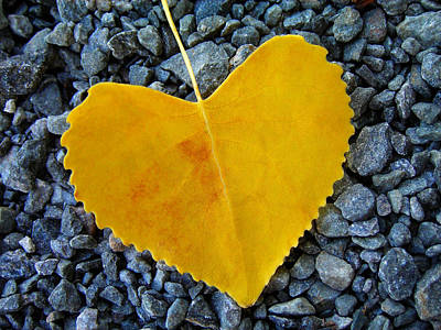 Leaf Photograph - In Love ... by Juergen Weiss