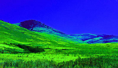 Bison Digital Art - In Montana  by Larry Stolle