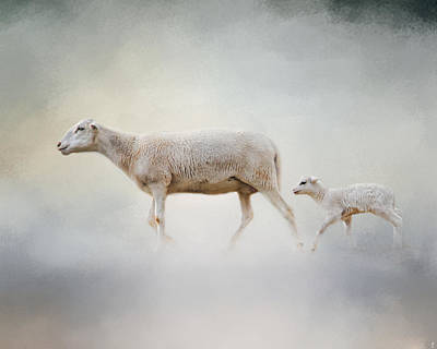 In My Mother's Footsteps - Sheep And Lamb Print by Jai Johnson