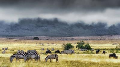 Photograph - In Ngorongoro Creator by Jnhphoto