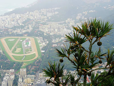 Brasil Photograph - In Rio by Zinvolle Art
