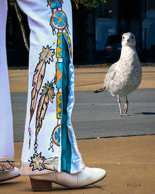 Seagull Photograph - In Search Of Elvis by Bob Orsillo