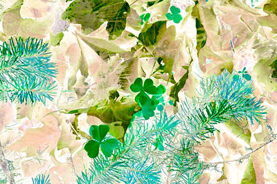 Forest Floor Photograph - In Seasons Past by Bonnie Bruno