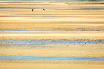Photograph - In Tasman Sands by Alexey Stiop