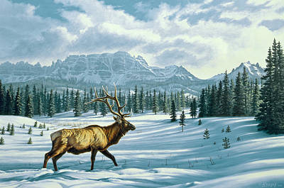 Elk Painting - In The Absarokas - Elk by Paul Krapf