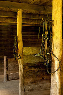 Photograph - In The Barn by Kristia Adams